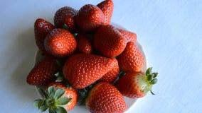 Het Voedselpresentatie van aardbeienheatly stock video