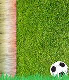 Het voetbal van de voetbal op gras Royalty-vrije Stock Afbeelding