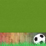 Het voetbal van de voetbal op gras Royalty-vrije Stock Fotografie