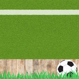 Het voetbal van de voetbal op gras Royalty-vrije Stock Foto's
