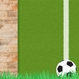 Het voetbal van de voetbal op gras Royalty-vrije Stock Afbeeldingen