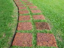Het voetpad maed van steen op groen gras Stock Afbeeldingen