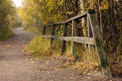 Het voetpad van de herfst. Stock Afbeelding