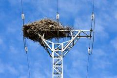 het vogelnest maakte met takken van bomen bij de bovenkant van een elektrotoren van hoogspanning die elektriciteit aan huizen in  stock afbeeldingen
