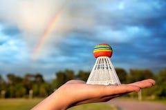 Het vogeltje van de regenboog op de hand Stock Afbeeldingen
