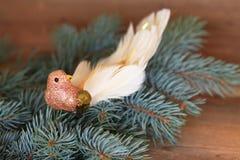 Het vogeltje van luxekerstmis stock fotografie