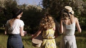 Het volgen lengte van drie mooie vrouwen die in buitensporige uitrusting tegen de weide of de bos Zonnige dag lopen Picknick in o stock footage