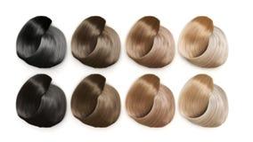 Het voorbeeld van verschillende 3d haarkleuren geeft op wit terug Royalty-vrije Stock Foto