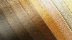 Het voorbeeld van verschillende haarkleuren als 3d achtergrond geeft op whit terug Stock Foto's