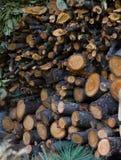 Het voorbereide brandhout, droogt verminderde takken voor de winter, alternatieve brandstof stock fotografie