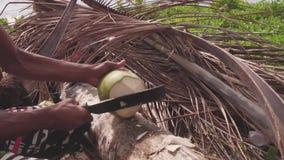 Het voorbereiden van een kokosnoot stock video