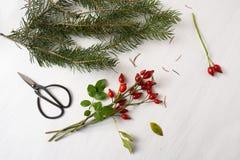 Het voorbereiden van natuurlijke Kerstmisdecoratie met rozebottels, spar branc stock foto's