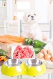 Het voorbereiden van natuurvoeding voor huisdieren Royalty-vrije Stock Foto's