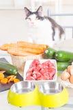 Het voorbereiden van natuurvoeding voor huisdieren Royalty-vrije Stock Foto