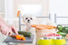 Het voorbereiden van natuurvoeding voor huisdieren royalty-vrije stock afbeelding