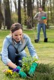 Het voorbereiden van tuin op de zomer Stock Foto's