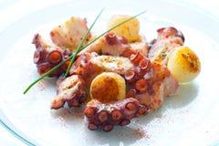 Het voorgerecht van de octopus met kleine aardappels. stock fotografie