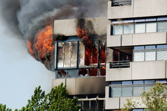 Het voortbouwen op Brand Stock Foto
