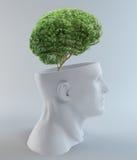 Het voortkomen van de boom uit een abstract hoofd Royalty-vrije Stock Foto's