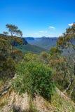 Het vooruitzicht van de Govettssprong, blauw bergen nationaal park, Australië 11 stock afbeelding