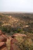 Het vooruitzicht van de savanne Stock Foto's