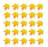 Het Voorwerp van de foto - het Blad van de Herfst Stock Afbeeldingen