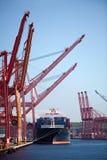Het vrachtschip van de container in haven Stock Afbeelding