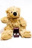 Het vragen van de teddybeer huwt me Stock Foto's