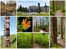 Het vreedzame Park van de Geest Royalty-vrije Stock Afbeeldingen
