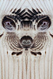 Het vreemde of dierlijke gezicht in de houten raad Stock Afbeelding