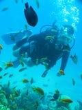 Het vrij duiken van de Youndmens onderwater in oceaan royalty-vrije stock foto's