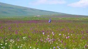 Het vrij Kaukasische meisje die foto met een selfiestok nemen op weide met purle bloeit Jonge mooie gelukkige vrouw in lang stock videobeelden