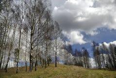 Het vroege landschap van het de lenteplatteland Royalty-vrije Stock Afbeelding