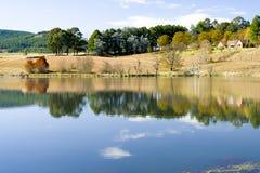 Het vroege ochtendschot van bomen dacht in het kalme water van een meer na Stock Fotografie