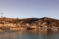 Het vroege zeegezicht van de ochtendzonsopgang in Avalon Harbor die naar het strand en de kleine stad kijken stock afbeelding