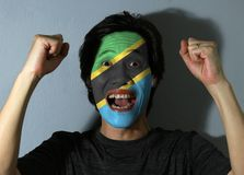 Het vrolijke portret van een mens met de vlag van Tanzania schilderde op zijn gezicht op grijze achtergrond Het concept sport of  stock afbeelding