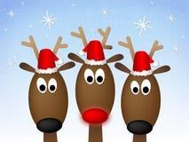 Het vrolijke Rendier van Kerstmis Stock Afbeeldingen