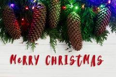 Het vrolijke teken van de Kerstmistekst op slingerlichten en denneappels op F Royalty-vrije Stock Foto's