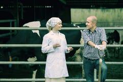 Het vrolijke veterinaire babbelen met landbouwer Stock Foto