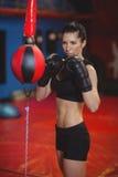 Het vrouwelijke bokser het praktizeren in dozen doen met snelheids in dozen doende bal Royalty-vrije Stock Fotografie
