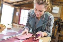 Het vrouwelijke schrijnwerker houten schuren royalty-vrije stock foto