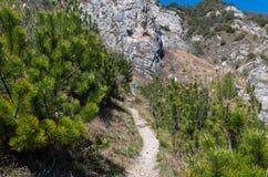Het vrouwelijke trailrunning in bergen bij Meer Garda, Italië Royalty-vrije Stock Foto