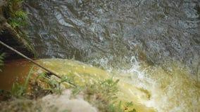 Het vuile water giet in de rivier in het bos stock videobeelden