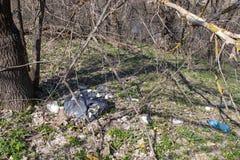 Het vuilnis verspreidde zich in de bosflessen, blikken en ander die vuilnis in het bos worden verspreid stock afbeeldingen