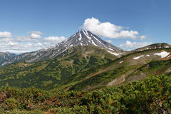 Het vulkanische landschap van Kamchatka: mening van Viliuchinsky-Vulkaan stock afbeeldingen