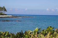 Het Vulkanische Strand van Hawaï royalty-vrije stock afbeeldingen