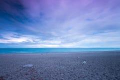Het Vulkanische Strand van Hawaï Royalty-vrije Stock Fotografie