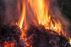 Het vuur van de nacht Royalty-vrije Stock Foto