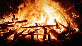 Het vuur vertakt zich intens stock videobeelden