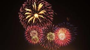 Het vuurwerk toont Royalty-vrije Stock Fotografie